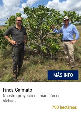 Cafmato - ESP